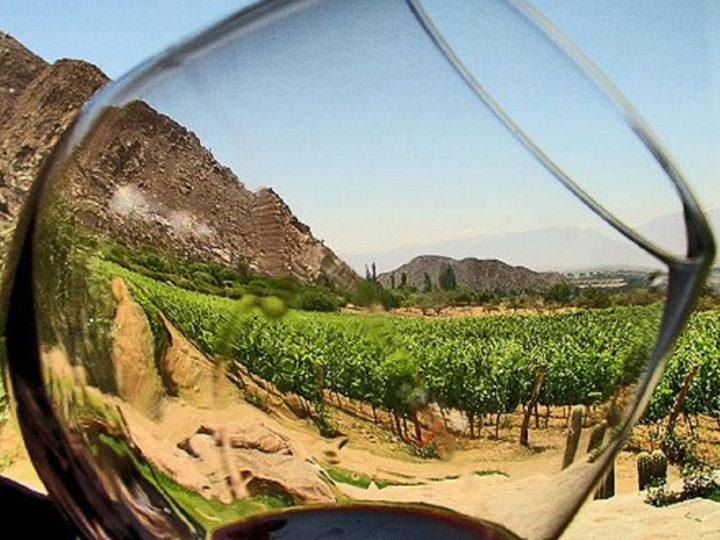 La Ruta del Vino del Valle de Guadalupe, un paraíso vinícola
